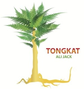 tongkat e-juice aspen valley vapes
